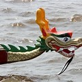 Dragon Boat Race newsletter